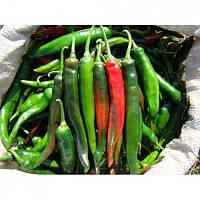 Семена перца Импала F1 5 гр
