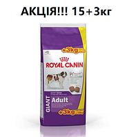 АКЦІЯ!!! 15+3кг. Корм для собак Royal Canin Giant Adult (Роял Канін Джайнт Едалт)