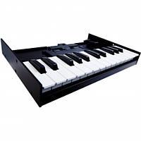 MIDI-клавиатура для модулей Roland K-25m, фото 1