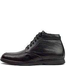 Ботинки VanKristi 692 М 561355 Черные