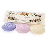Набір міла Provence flowers від Galimard