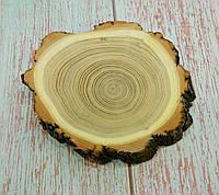 Спил,зріз дерева, Акація, діаметр 7-8 див.