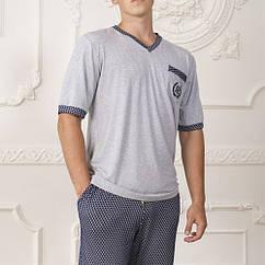 Комплект: футболка шорти Комільфо Vladimir M Сірий (4068)