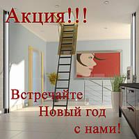 Чердачные лестницы по суперцене!