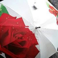 Женский зонт Розы  5926 (К.Т.С.)