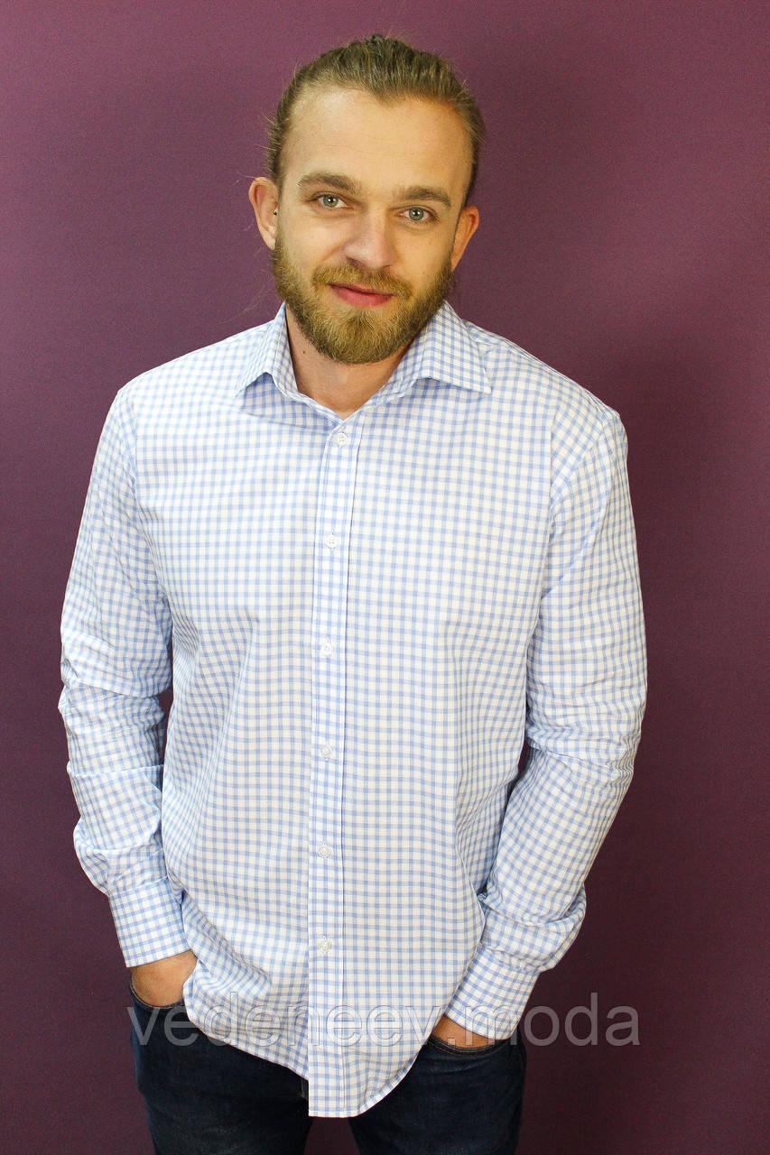Мужская рубашка  белая в голубую клетку