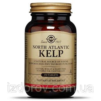 Solgar, Келп, North Atlantic Kelp, Североатлантические водоросли, натуральный источник йода, 250 таблеток