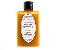Repairing Shampoo (Відновлюючий шампунь Galimard)