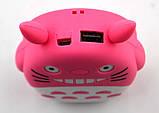 Портативний акумулятор дитячий Totoro 12000 mAh / 1 USB, фото 2