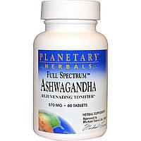 Ашваганда  570 мг  60 табл успокоительное антистрессовые Planetary Herbals