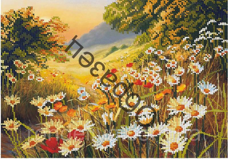 Схема для вишивки бісером «Ромашкове поле»