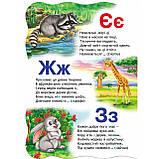 Книжка-картонка Малятко-розумнятко Абетка у загадках Авт: Федієнко В. Вид: Школа, фото 2