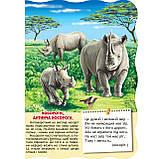 Книжка-картонка Малятко-розумнятко Африканські тварини Авт: Федієнко В. Вид: Школа, фото 3