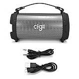 Портативна колонка Cigii S22R (USB, SD, AUX, micro-USB, FM, Bluetooth), фото 7