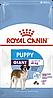 Корм Royal Canin Giant Puppy, для цуценят гігантських порід, 15 кг