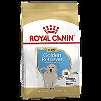 Корм Royal Canin Golden Retriever Junior, для щенков Голден ретриверов, 3 кг