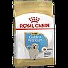 Корм Royal Canin Golden Retriever Junior, для щенков Голден ретриверов, 12 кг