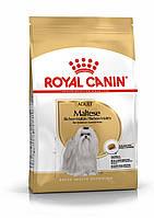 Корм Royal Canin Maltese Adult, для Мальтийской болонки, 0,5 кг