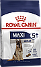 Корм Royal Canin Maxi Adult, для дорослих собак великих порід, 15 кг