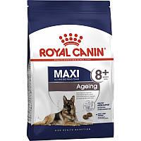 Корм Royal Canin Maxi Ageing 8+, для собак крупных пород от 8 лет, 15 к