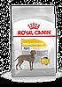 Корм Royal Canin Maxi Dermacomfort, при кожных раздражениях и зуде, 10 кг 2444100