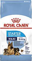 Корм Royal Canin Maxi Starter, для щенков и беременных и кормящих сук, 1 кг