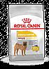 Корм Royal Canin Medium Dermacomfort, при кожных раздражениях и зуде, для средних пород, 3 кг 2442010