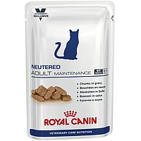 Консервы Royal Canin Neutered Adult Maintenance, для стерилизованных кошек, упаковка 12шт х100г