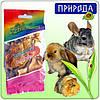 Десерт для грызунов Природа Фиеста Тыковка, микс, 40 г