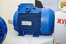 Электродвигатель АИР 112 M4 (5,5 кВт; 1500 об/мин, Могилев)