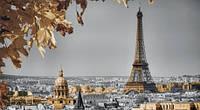Репродукция на холсте, Осень в Париже