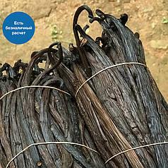 Ваніль в стручках ванільна паличка спеції прянощі для приготування кухні ресторану Мадагаскар