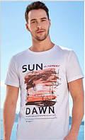 Чоловічі футболки турецькі 4088, фото 1