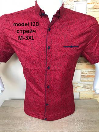 Рубашка короткий рукав G-Port (model*120) с принтом, фото 2