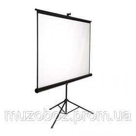 Экран для проекторов AV Screen 3V060MTS