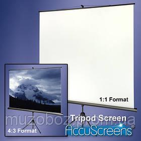 Экран для проекторов AV Screen 3V100MTV