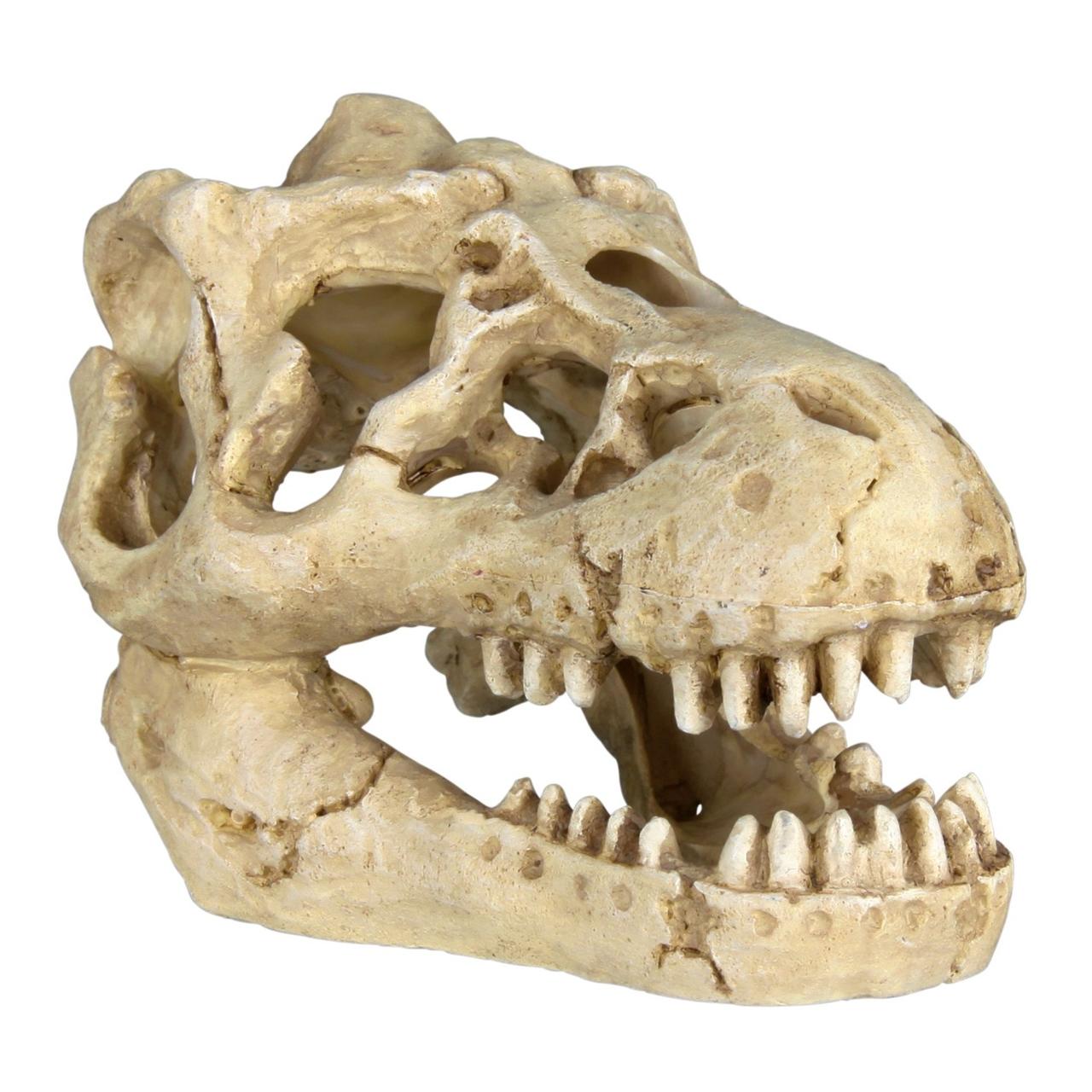 Декорація для акваріума Trixie Черепа тварин 8-11 см, набір 6 шт. (поліефірна)