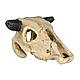 Декорація для акваріума Trixie Черепа тварин 8-11 см, набір 6 шт. (поліефірна), фото 5