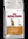 Сухий корм (Роял Канін) Royal Canin Exigent Protein 10 кг для вибагливих кішок від 1 року, фото 2