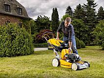 Как выбрать газонокосилку: ТОП-5 лучших газонокосилок