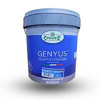 Genyus Special Basa P - Акриловая краска. SPIVER