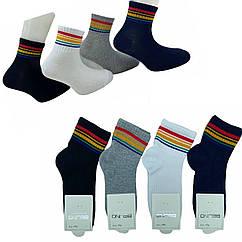 Шкарпетки бавовняні 5-6 років для дівчаток ТМ Belino