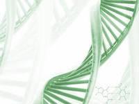 """Косметическая концепция """"Диэнай""""- уникальное омоложение потоками с ДНК."""