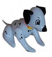 Надувная игрушка Собака далматинец 25 см(ОПТОМ)345