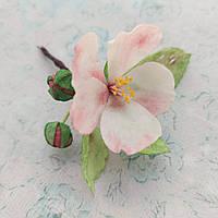 Цветок яблони из вафельной бумаги. Веточка: 2 бутона, 3 листика, цветок. Украшение для торта / десерта
