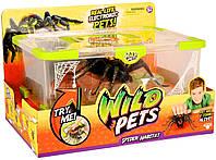 Паук в банке интерактивный Wild Pets Spider Habitat
