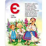 Книжка-картонка Улюблена абетка Авт: Цушко С. Вид: Школа, фото 2