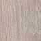 Двери межкомнатные Неман Тюльпан, фото 6
