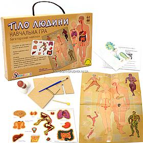 Настольная игра Умняшка обучающая с многоразовыми наклейками «Тело человека», от 6 лет (КП-004у)