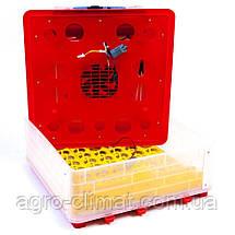 Инкубатор автоматический Tehnomur MS-56, фото 2